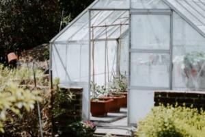 serre dans un jardin